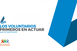 Día del voluntariado 2017